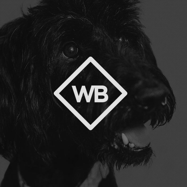 Dog Daycare & Spa Branding